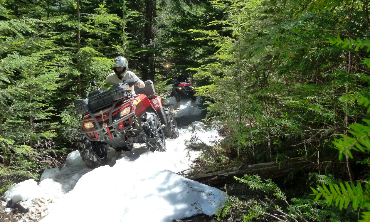 An ATV traversing over snow in the woods.