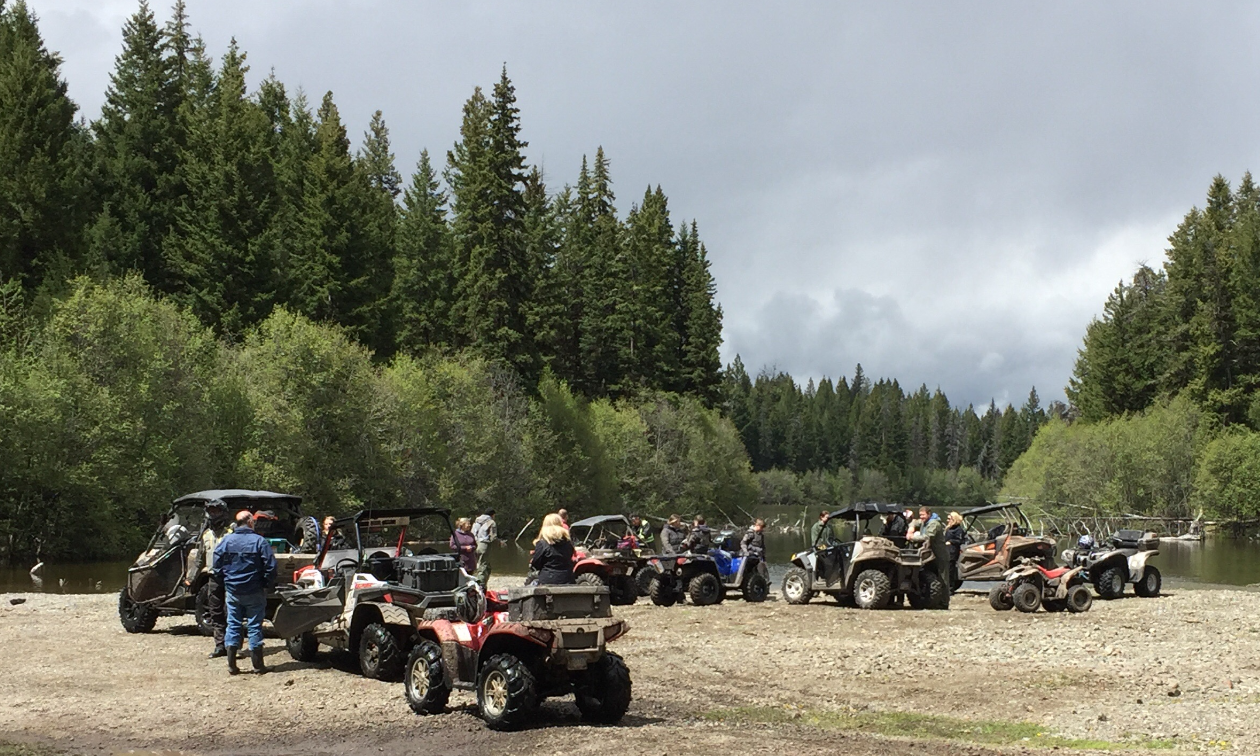 A line of ATVs along a lake edge in the woods.