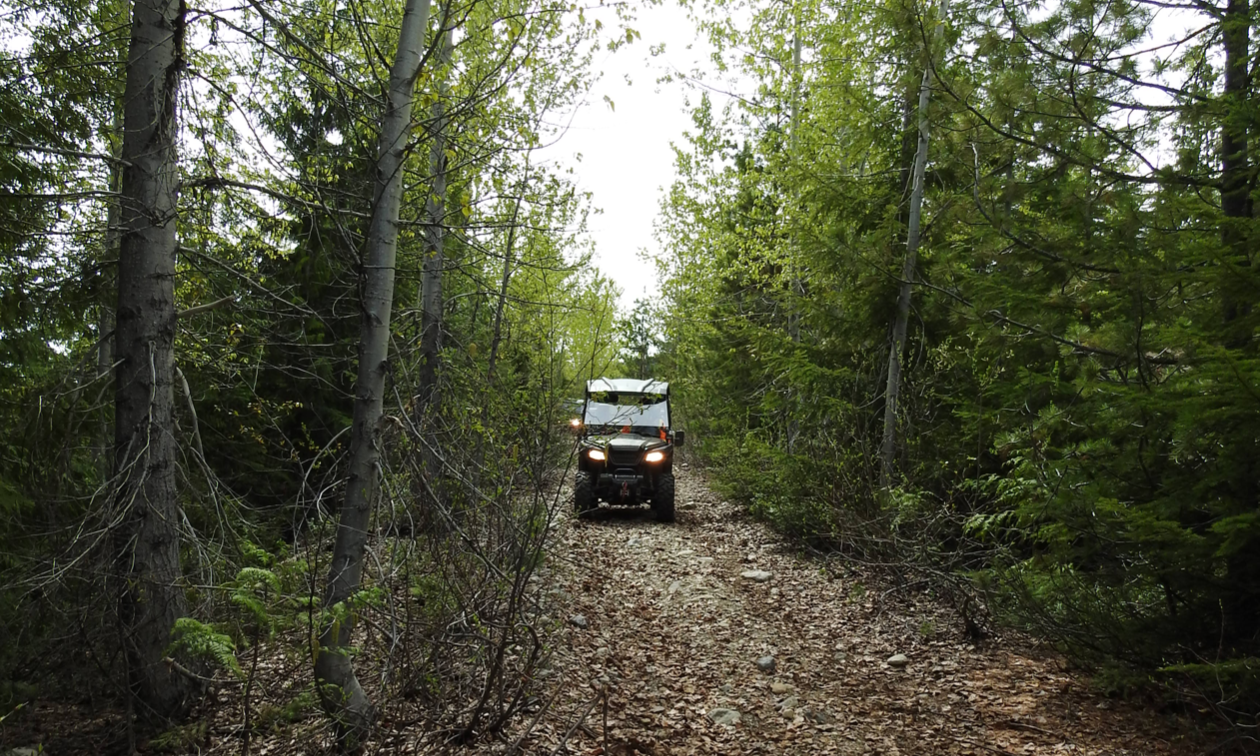 An ATV drives through a narrow trail with tall trees on each side.