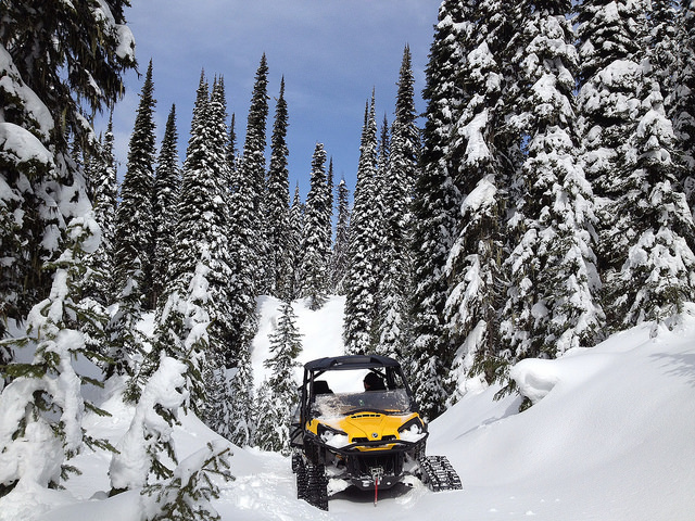 Catherine Zimmer and her husband Mike Kietzman of Creston British Columbia enjoy four season riding in their winter wonderland of a back yard thanks to the installation of winter tracks on their CanAm Commader.