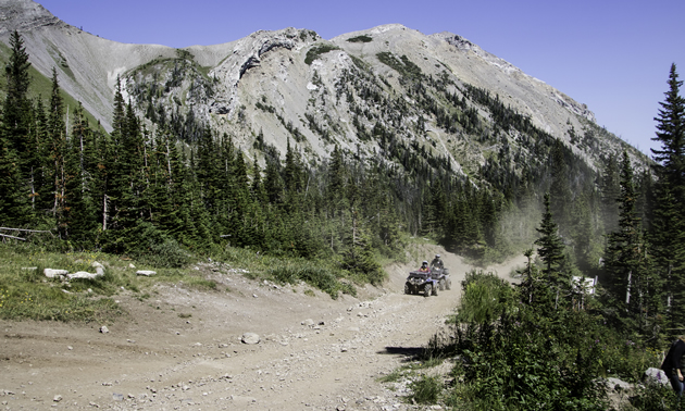 Quadding in the Castle area of Crowsnest Pass, Alberta.