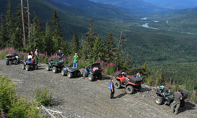A group of ATVs riding up a logging road.