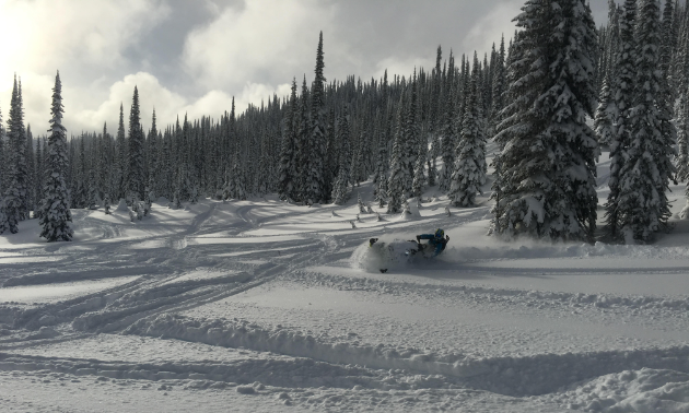 Allan Bouchard plays in the powder in the backcountry.