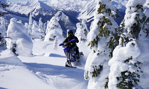 Backcountry snow biking in Valemount B.C.