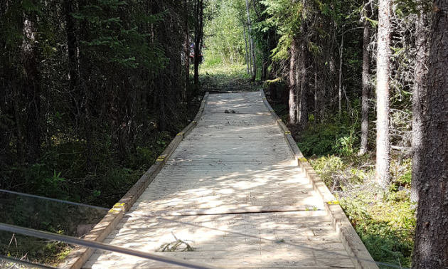 A wooden bridge extends into the forest, leading to a continuation of an ATV trail.