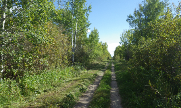 The Interlake Pioneer Trail's roots date back to 1914.