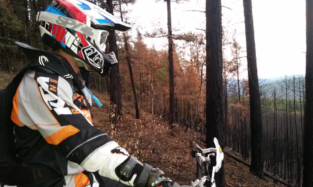 Many of Williams Lake's trails have been wiped out due to wildfires in 2017.