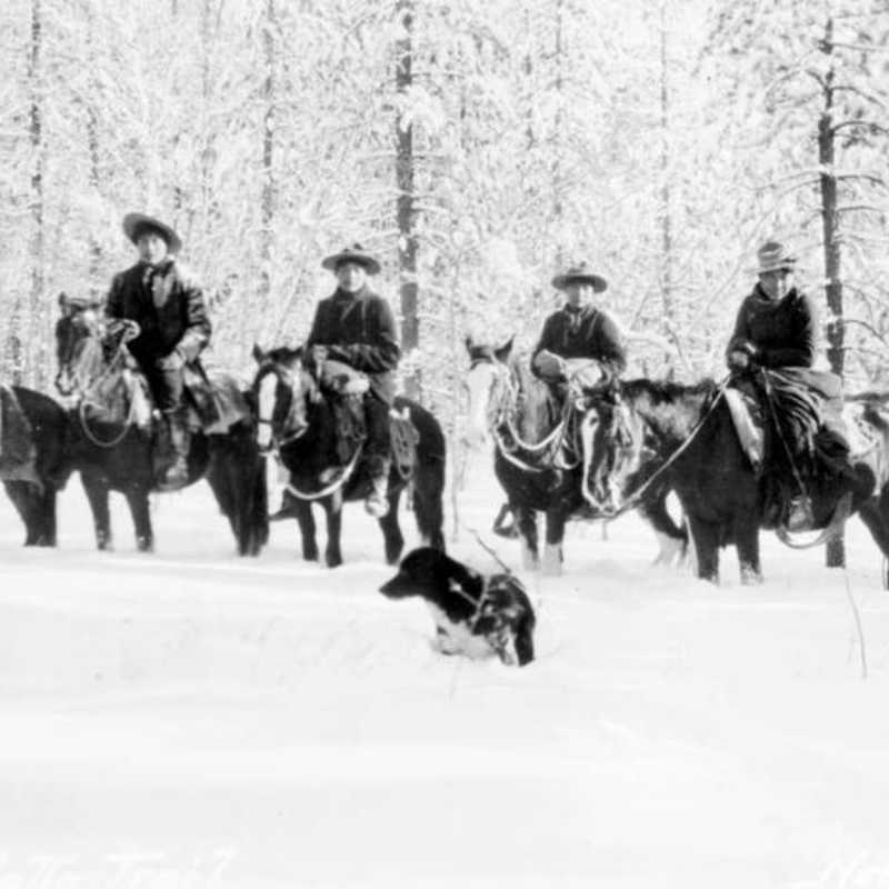 A group of Cheslatta people from Cheslatta Lake riding horses on the Cheslatta Trail in 1911.