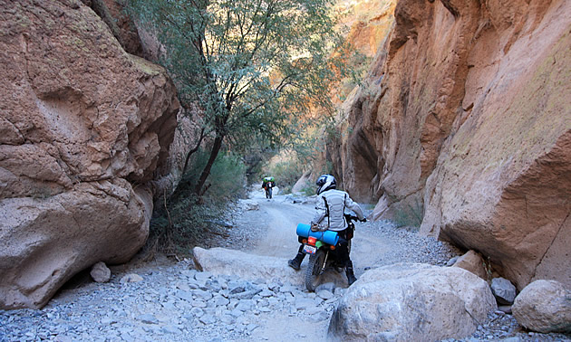 woman riding a bike through rugged terrain in Arizona