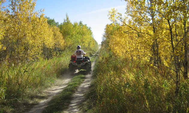 an ATV on a trail