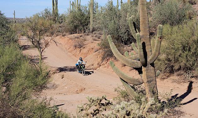 lady riding through Florence, Arizona on an off-road bike