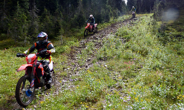 Stephen Howland, Carl Kuster and Steve Foord riding Beta bikes in the backcountry of B.C.