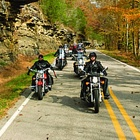 People riding motorcycles with autumn trees on either side