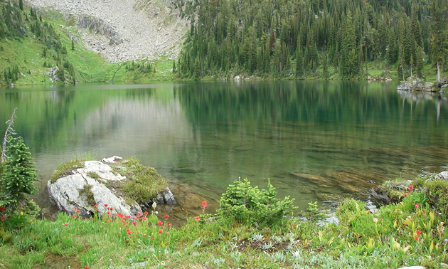 Scenic shot of an alpine lake.