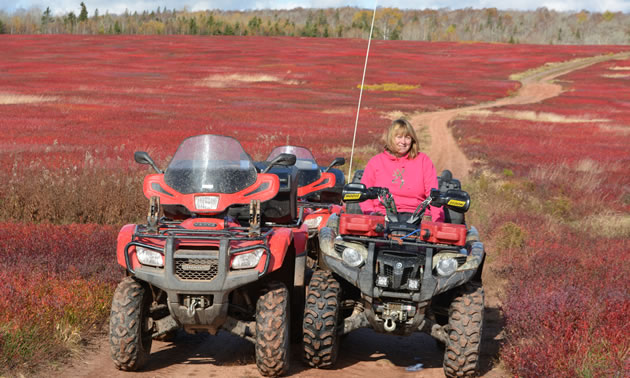 Two ATVs parked in a field full of red plants.