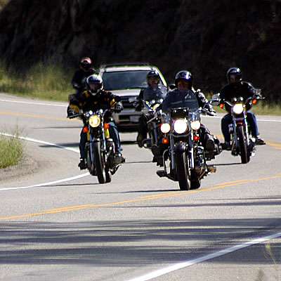 A group of motorcycles sharing the winding road with other vehicles.