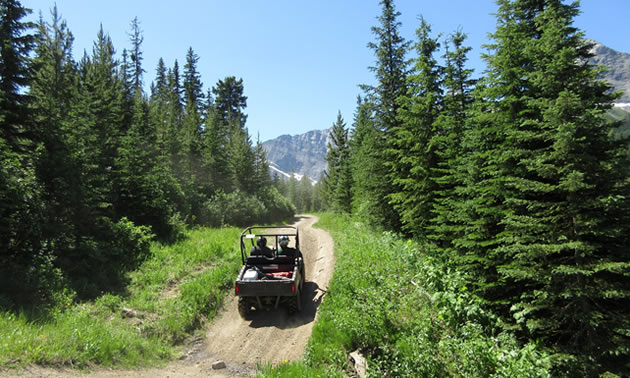 Off-road vehicle travelling down dirt road.