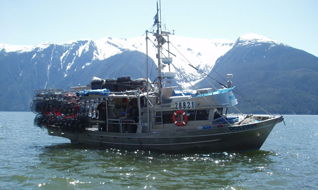 A prawn fishing boat in a harbour near mountains in B.C.