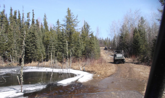The trails at Narrow Hills Provincial Park run through northern boreal forest.