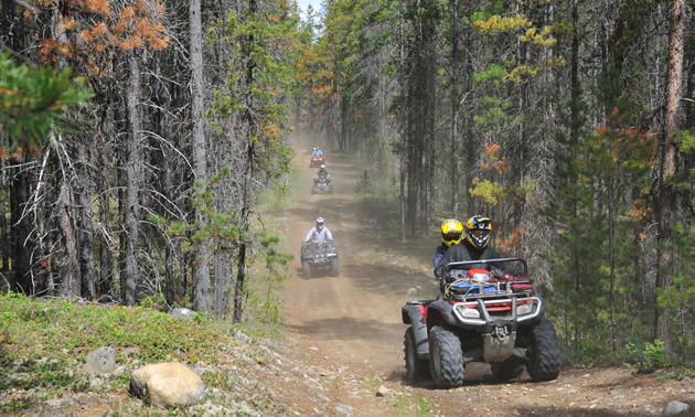 ATVers riding up a trail in Valemount, B.C.